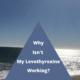 Why isn't My Thyroid Medication – Levothyroxine working?