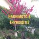 Hashimoto's thyroiditis – Myths, Symptoms, Diagnosis, Treatment